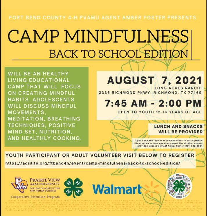 Camp Mindfullness